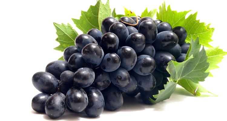 Свойства винограда