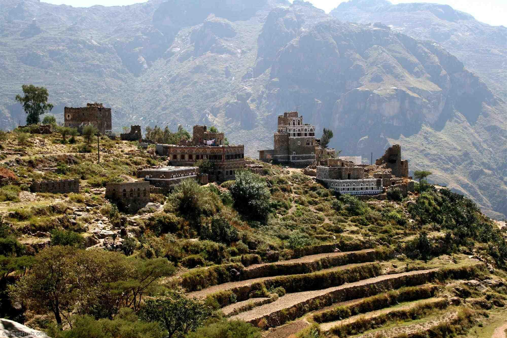 йеменский кофе «Мокко»