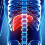 Роль глюкозы в организме